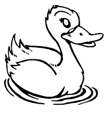 duck is swimming coloring page netart