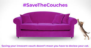 sofa that cats won t scratch steve dale feliscratch new product to encourage cats to scratch on