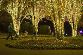 The Dancing Lights Of Christmas by 13 Ways To Experience 12 Days Of A Tennessee Christmas Tennessee