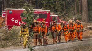 Ca Wildfire Training by The Prisoners Fighting California U0027s Wildfires