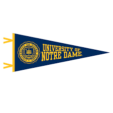 University Of Michigan Flag Pennant 12