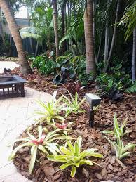 Tropical Backyard Designs Backyard Makeover For A Tropical Landscape With A Tropical And