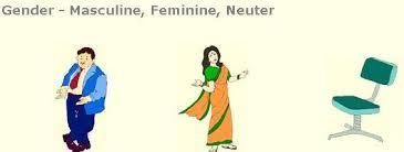 lesson plan of masculine feminine and neuter gender english grade