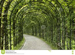 English Garden Pergola by Garden Pergola Tunnel Walkway In Park Stock Photo Image 77529409