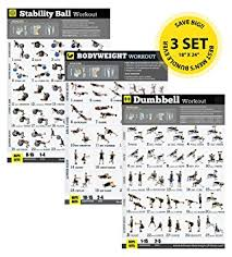 home exercise posters set of 3 workout chart now