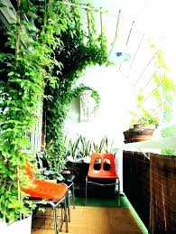 home interior plants home decor plants home decor plants home decor plants decor plants