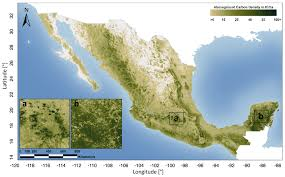 Map Of Jalisco Mexico by Remote Sensing Free Full Text A National Detailed Map Of