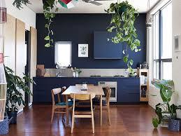 kitchens interiors cozinha azul e plantas na decoração interiores interiors
