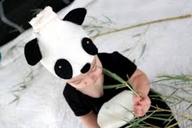 Panda Bear Halloween Costume Panda Bear Baby Costume Cute Baby Costumes