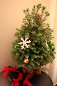 it u0027s beginning to look a lot like christmas