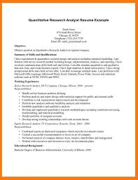 Systems Analyst Resume Example by System Analyst Cover Letter