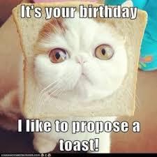 Boyfriend Birthday Meme - happy birthday meme happy birthday meme for friends and family