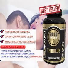 dimana beli gold nutrition tribulus terrestris suplement pembesar