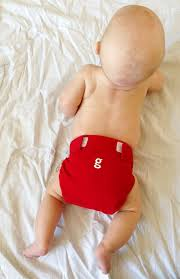 Cloth Diaper Starter Kit Adventures With Cloth Diapers Ask Your Dad Blog
