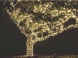 permanent tree lighting outdoor lighting of colorado s