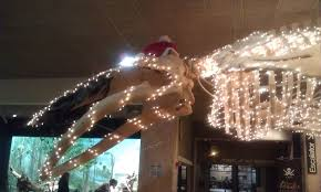 thanksgiving turkey lights the christmas whale a depressing reminder of the importance of