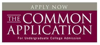Sample Paper Common App     Promoting College Access Millicent Rogers Museum
