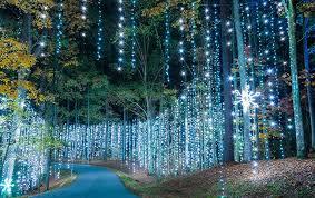 callaway gardens fantasy lights groupon fantasy in lights christmas at callaway callaway resort gardens