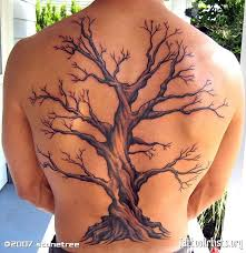 tree inspiration and