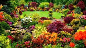 ideas for gardens designs youtube
