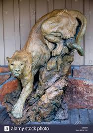 mountain lion statue mountain lion or statue in jackson wyoming usa stock