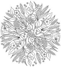 nature scene coloring pages 292 best flower coloring pages images on pinterest drawings