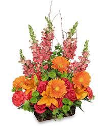 greenville florist brilliant basket arrangement in greenville oh helen s flowers