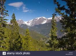 solitude peaceful mountain scenery peaks pine trees rocky mountain