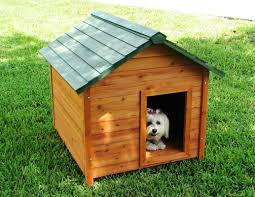 furniture diy double igloo dog house for pet accessories ideas