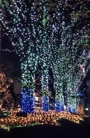 73 christmas lights images christmas lights