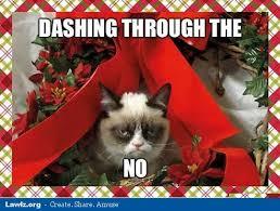 Grumpy Cat Snow Meme - dashing through the no snow christmas grumpy cat meme jpg