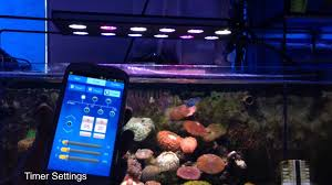 led aquarium light with timer aqua sanrise marine led aquarium light youtube