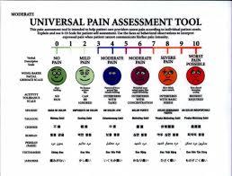 tattoo pain level chart female tattoink tattoo pain scale 1 10
