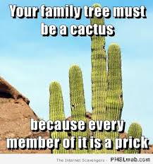 Tree Meme - 37 your family tree must be a cactus meme pmslweb