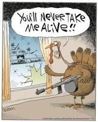 thanksgiving humor day of thanks thanksgiving
