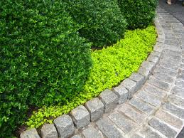 flower bed stone edging garden inspiration pinterest gardens