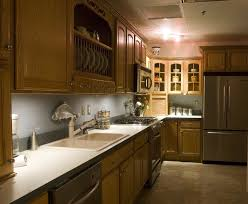 Luxury Traditional Kitchens - small traditional kitchen with wooden wall cabinets and plate