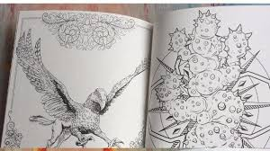 96 pages harry potter coloring book adults secret garden book