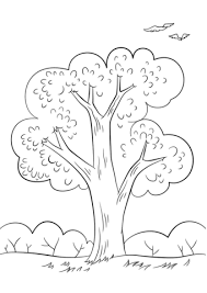 summer tree coloring free printable coloring pages