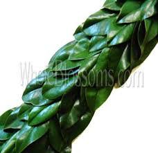 salal eucalyptus evergreen garland at wholesale