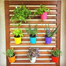 my mini balcony garden it u0027s not much but i like it gardening