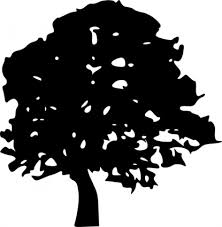 black and white image of trees clip library