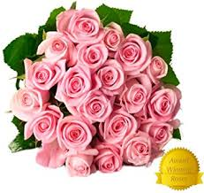 free shipping flowers flower delivery 25 light pink premium fresh roses