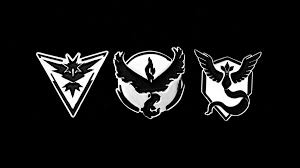 Pin 30 Black And White by Team Valor Pin Warrior Pins