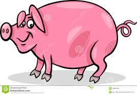 pig farm animal cartoon illustration stock images image 28963344