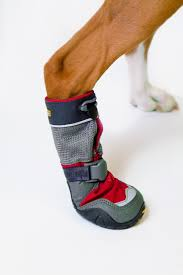 amazon canada s boots ruffwear polar trex winter boots for dogs rock medium