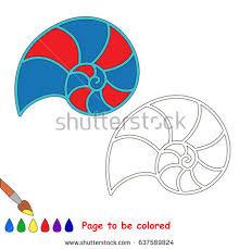 red nautilus coloring book educate preschool stock vector
