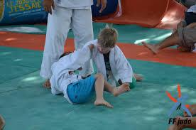 palmier du chili du judo à l u0027ombre des palmiers bandolais fédération française de