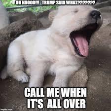 Puppy Meme - bored puppy memes imgflip
