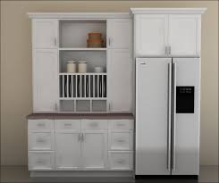 Ikea Kitchen Storage Cabinets Food Storage Cabinet With Doors Full Image For Food Storage